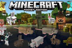 Minecraft: Pocket Edition v0.14.3 APK